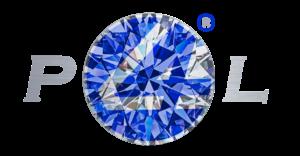 p4l logo